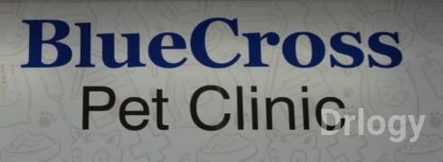 BlueCross Pet Clinic in Ahmedabad